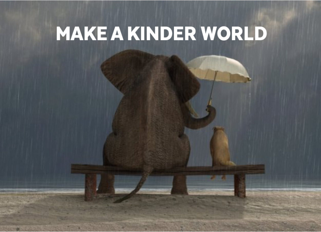 MAKE A KINDER WORLD